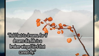 Follow your dreams quote Images