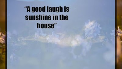 Funny Sunshine Quotes images