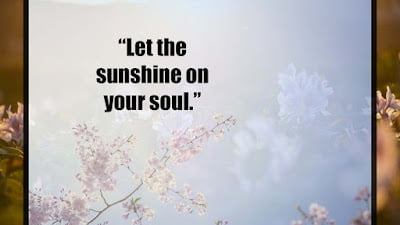 Quotes About Sunshine images
