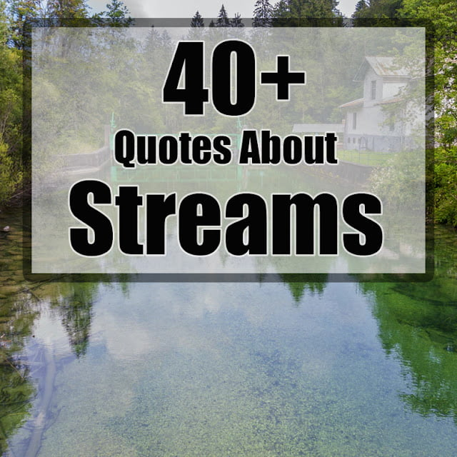 stream quotes quotes about streams