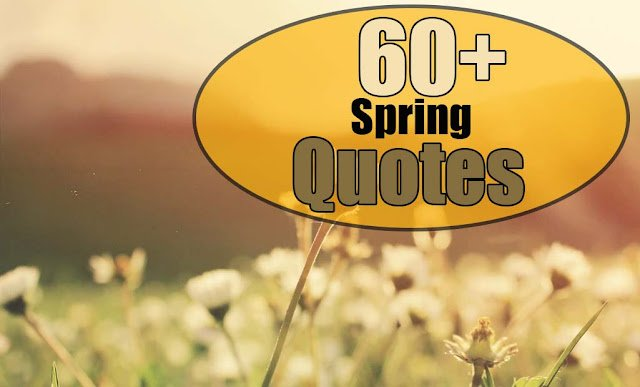 spring quotes quotes about spring